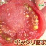 なるほどレストラン 極限トマト ゴジラエビで究極のトマトパスタ レシピとトマトジュース