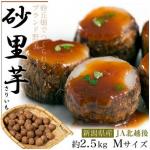 青空レストラン 砂里芋(さりいも)村上牛のしぐれ煮 お取り寄せ 新潟県 /里芋ポタージュ レシピ 10月15日